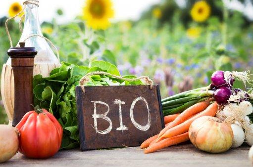 na zdjęciu zdrowe piękne kolorowe warzywa